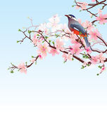 Fåglar på blommande cherry detaljerad vektor — Stockvektor