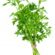 Bunch of fresh parsley — Stock Photo