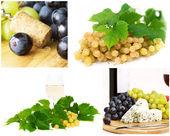 Wine collage — Stock Photo