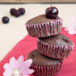Chocolate muffins — Stock Photo
