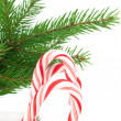 Christmas candy canes — Foto de Stock