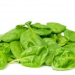 Baby spinach — Stock Photo #31051869