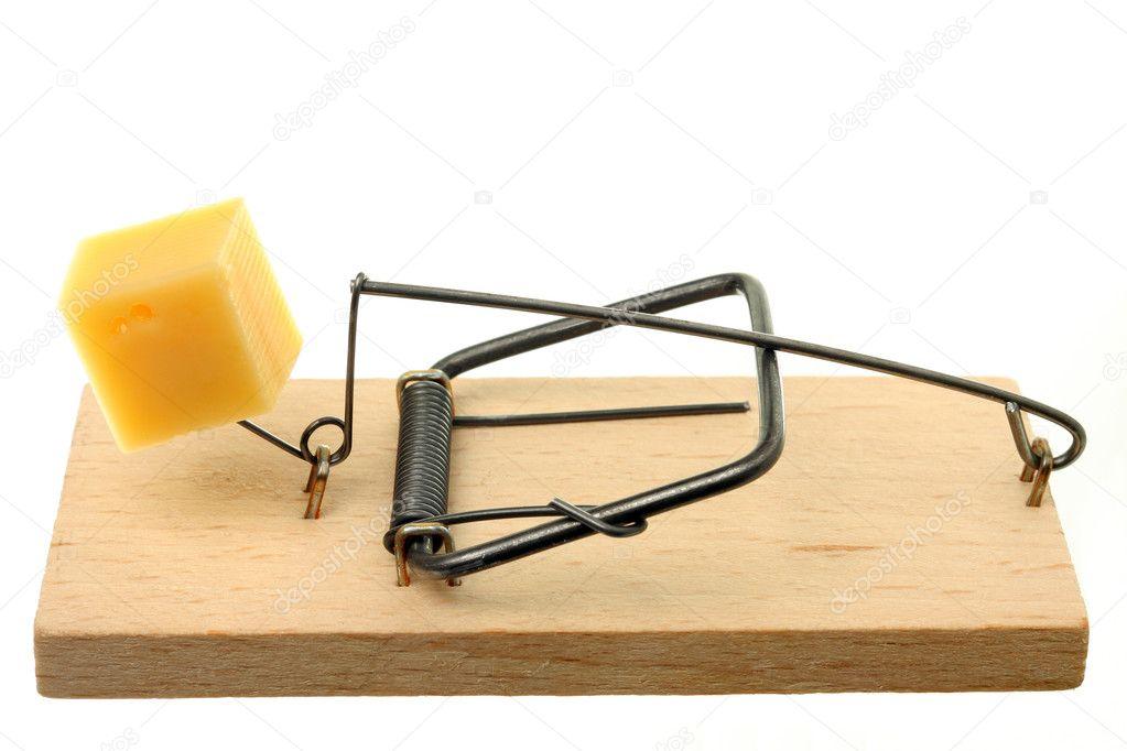 mousetrap clip art - photo #30