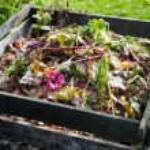 Compost bin — Stock Photo