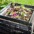 Stock Photo: Compost bin