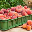 Peach fruits — Stock Photo #34244595