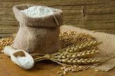 Wheat grain and flour — Stock Photo