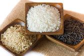 Rice grain — Stock Photo