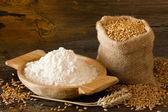 Flour and wheat — Stock Photo