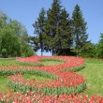Spring Park — Stock Photo #21903029