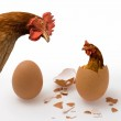 Chicken or Egg on White, Philosophy Question, Who Was the First. Philosophical Dilemma — Stock Photo #2111641