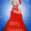 Stock Photo: Little santa in red sack full of presents