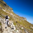 Young hiker walking to the top of charpatian mountains — ストック写真