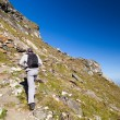 Young hiker walking to the top of charpatian mountains - Stock Photo