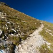 Trail on Fagaras mountains in Romania, in a summer day — Stock Photo