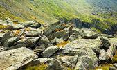 Rocky landscape — Stock Photo