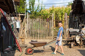 Cute boy pushing a barrow at countryside — Stock Photo