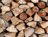 Stack of beech chopped firewoods — Stock Photo