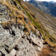 Landscape with mountain trail — Stock Photo