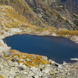Glacial lake — Stock Photo #12900357
