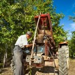 Stock Photo: Senior farmer repairing the engine of his tractor in an orchard