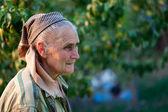 Closeup portrait of a senior woman outside — Stock Photo