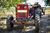 Tractor with trailer in an orchard — Stock Photo