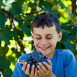 Happy schoolboy with hands full of grapes - Stockfoto