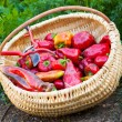 Stock Photo: Closeup of a basket full of red peppers