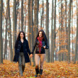Two happy girlfriends walking in the woods while holding hands - Stock Photo