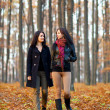 Two happy girlfriends walking in the woods while holding hands — Stock fotografie