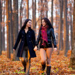 Two happy girlfriends walking in the woods while holding hands — Foto de stock #16844181