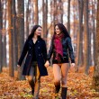 Two happy girlfriends walking in the woods while holding hands — Stock Photo #16844181