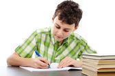 Estudante fazendo lição de casa — Foto Stock