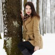 Beautiful brunette leaning on a tree trunk in the winter — Stockfoto
