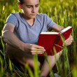 Royalty-Free Stock Photo: Boy reading while sitting on the grass