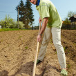 Stock Photo: Mworking land