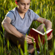 Teenage boy reading a book at sunset — Stock Photo