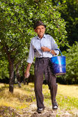 Old farmer fertilizing in an orchard — Stock Photo