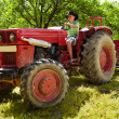 Teenage boy driving the tractor — Stock Photo