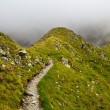 Mountain trail — Stock Photo