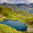 Stock Photo: Lake Caprin Romania