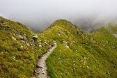 Mountain trail — Stock Photo