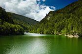 Petrimanu lake on summer — Stock Photo