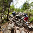 Stock Photo: Hikers climbing on rocks in a coniferous forest