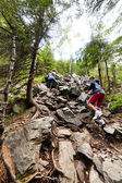 Hikers climbing on rocks in a coniferous forest — Stock Photo