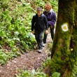 Stock Photo: Mother and son walking on hike trail