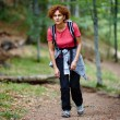 Female tourist hiking in a mountain forest — Stock Photo #33515565