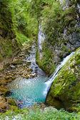 The Galbenei Gorge from the Carpathian mountains — Stock Photo