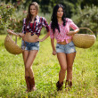 Sexy women carrying baskets of apples — Stock Photo